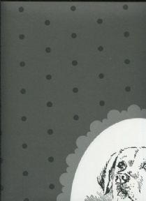 Paper & Ink Black & White Wallpaper BW21800 By Wallquest Ecochic For Today Interiors